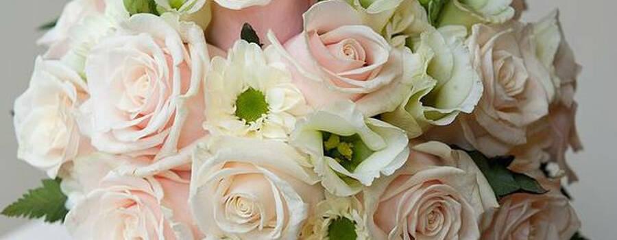 Mengotti Fiori Flowers Philosophy