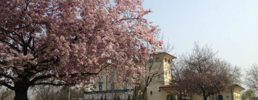Villa Belvedere 1849 Caravaggio