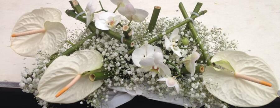 I fiori di Anna e Azeglio