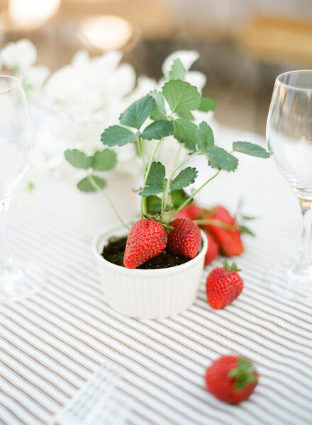 Las fresas y los frutos del bosque son perfectos para este tipo de bodas.