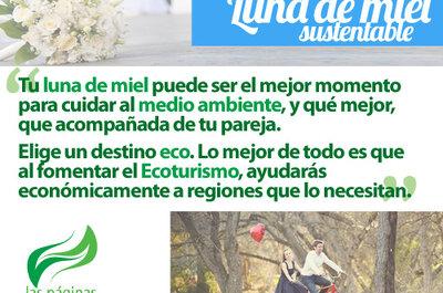 Viaje ecofriendly: Organiza una luna de miel sustentable y encantadora