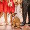 Mascotas vestidas de gala - Foto: Danielle Capito