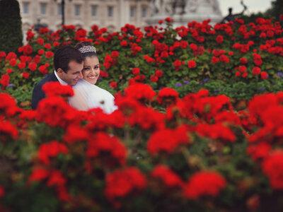 Casamento de Ana Luísa e Carlos em BH: elegância e descontração em clima de despedida do Brasil