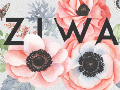 Hoy es el último día para votar: ¡Finalizan los ZIWA 2017!