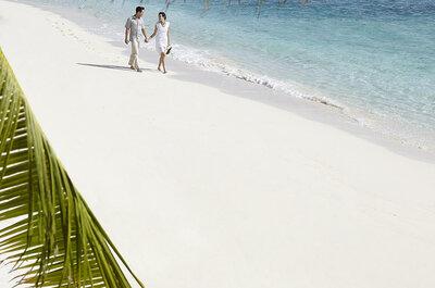 Ihre Flitterwochen im Dusit Thani Resort Maldives - Erleben Sie eine unvergessliche Hochzeit und traumhafte Flitterwochen!