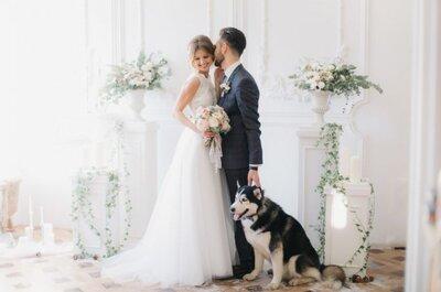 Кружева в интерьере вашей свадьбы : советы и рекомендации от профессионалов!