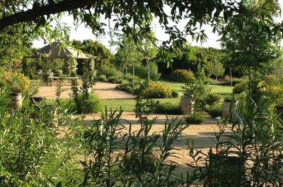 Descubre tu lado más natural con una boda en un viñedo de Aranjuez