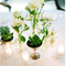 Decoración de boda con elegantes suculentas - Foto Phenomenon Photographers