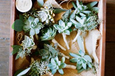 La belleza de las suculentas en la decoración de tu boda: Conoce estas lindas plantas