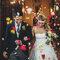 Pétalos de flores multicolores para una boda muy primaveral. Foto: Carolina Sainz