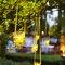 Idée décoration extérieur arbres avec bougies.