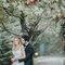 Casamento Mónica e Diogo