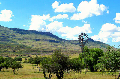Top 4 ideeën voor een huwelijksreis in Zuid-Afrika