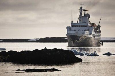 """E tu, oseresti un viaggio di nozze """"da brivido"""" tra i viaggi dell'Antartide?"""