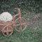 Bicicleta Rústica usada para um casamento no campo. Foto: Cuca Bordon
