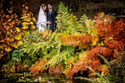 Real Wedding: Louise and Andreas' Wonderful Autumnal Wedding!