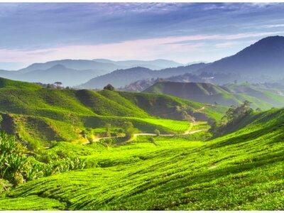 Lune de miel extra : les splendeurs de la Malaisie