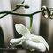 Anillos en flores blancas. Foto: Roberto Carmona