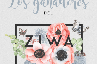 Funcionamiento de ZIWA 2016: ¡resolvemos tus dudas!