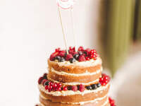 Naked Wedding Cakes 2016