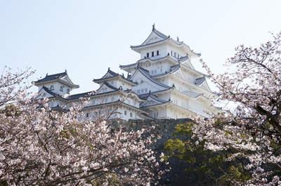 Japón es único: frenesí, paz, luz y color en una tierra de contrastes