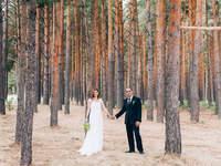 Wie gestalte ich eine unvergessliche Hochzeit mitten im Wald? Wir verraten Ihnen wie es geht!