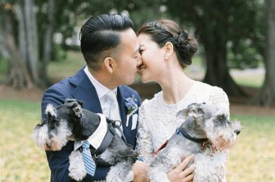 Sages, espiègles, câlins… Les plus belles photos de chiens à des mariages !