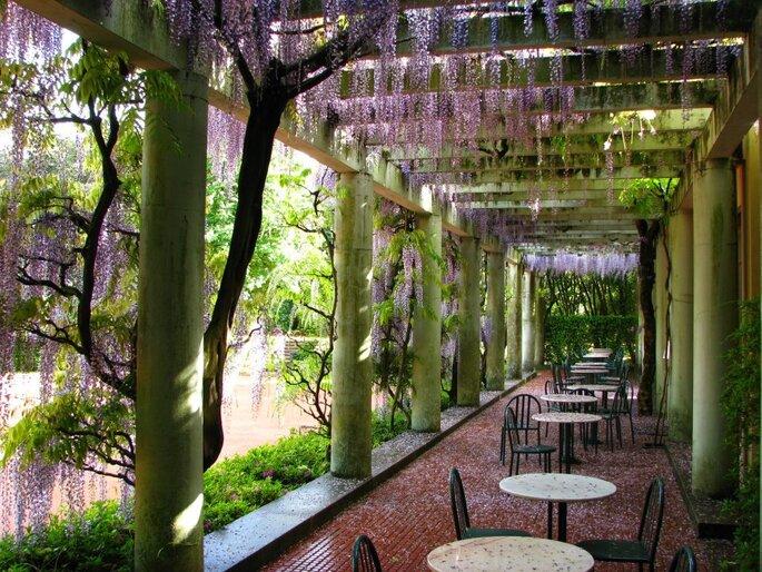 Casa de Chá de Serralves