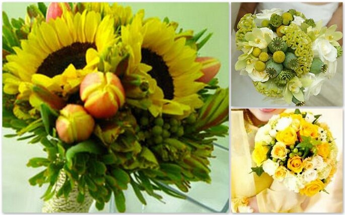 Girasoli o piccoli fiori bianchi e gialli