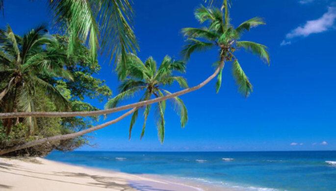 500 kilómetros de playas de Kenia a Tanzania: arenas blancas, aguas celestes y palmeras hacen un marco perfecto para los mieleros amantes del sol y el romance