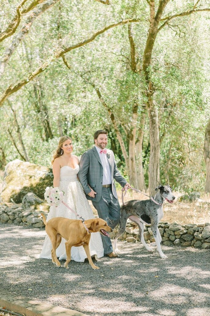 6 tips para incluir a tu mascota en la boda - Matt Edge Wedding Photography