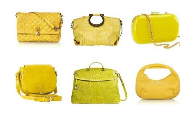 Dall'alto a sinistra: Marc Jacobs,Salvatore Ferragamo,H&M, Accessorize, Furla e Bottega Veneta