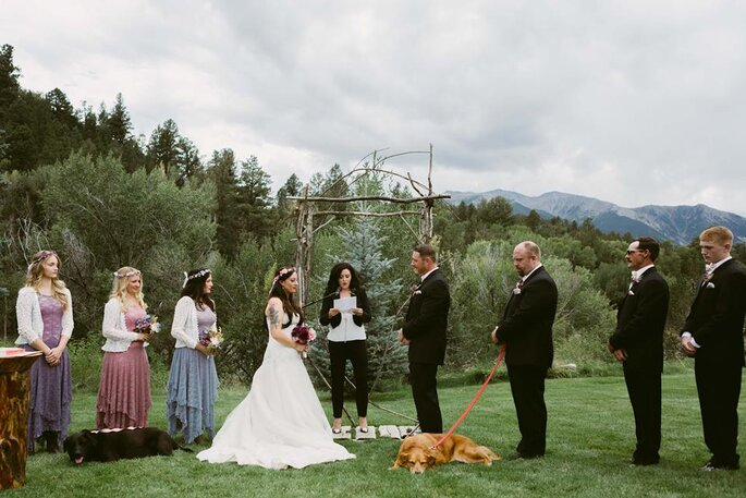 wedding-party-dogs