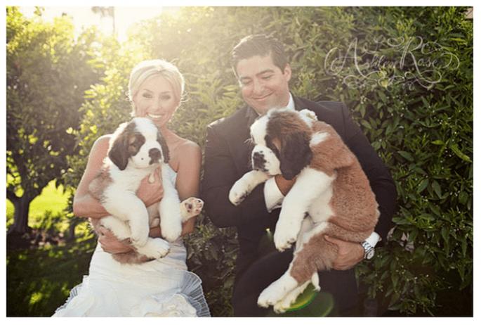 Disfruta de un lindo perrito de compromiso - foto Ashley Rose