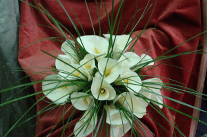 Ed un bouquet di calle