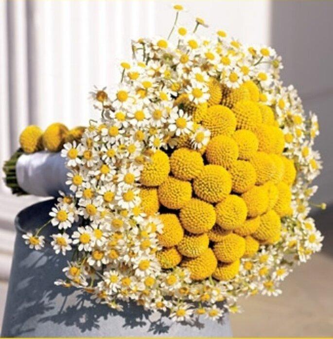 Bouquet di camomilla. Foto:  www.sposalicius.com