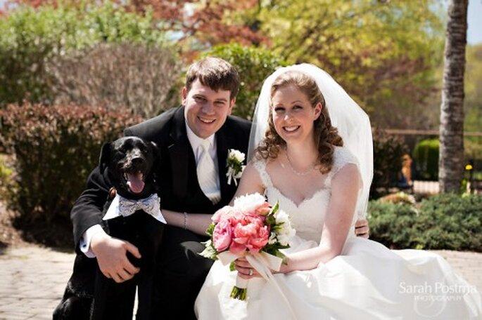 Sesión de fotos de boda con perros - Foto Sarah Postma