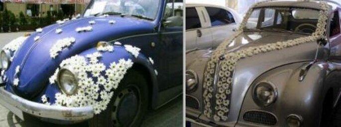 dekoracja samochodów ślubnych
