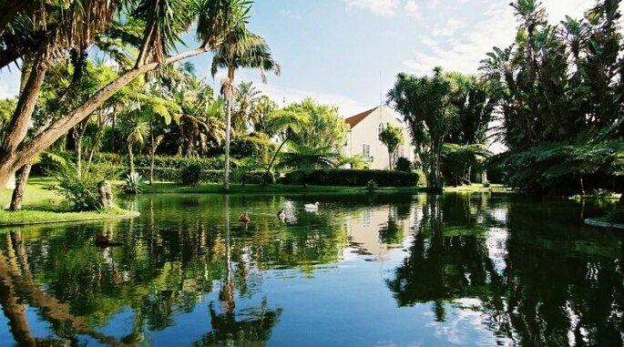 Quinta da Nasce Água