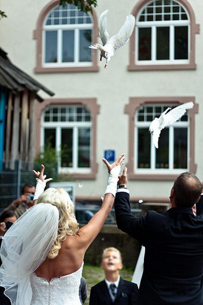 Hochzeitstauben fliegen lassen. Foto: Adrian Wagner