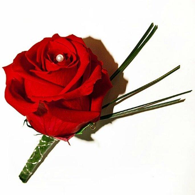 Rose rouge conservée