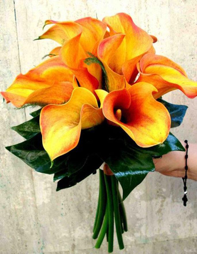Foto: Baccara floristas.