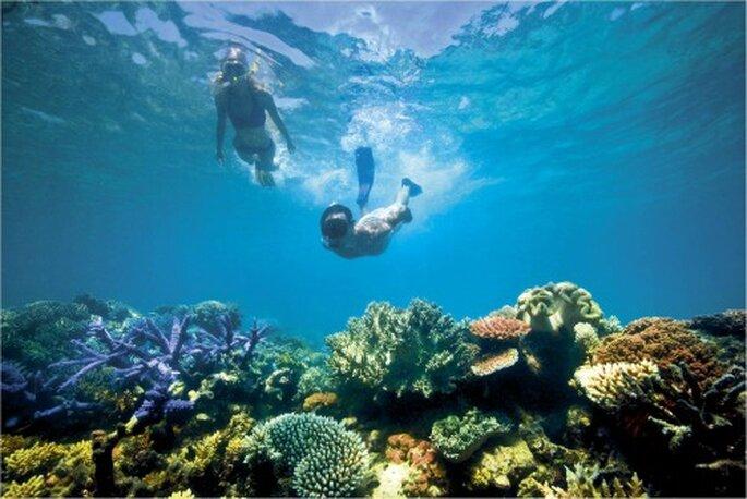 Grâce au Printemps Voyages, votre lune de miel sera personnalisée - crédit photo : © Tourism Australia
