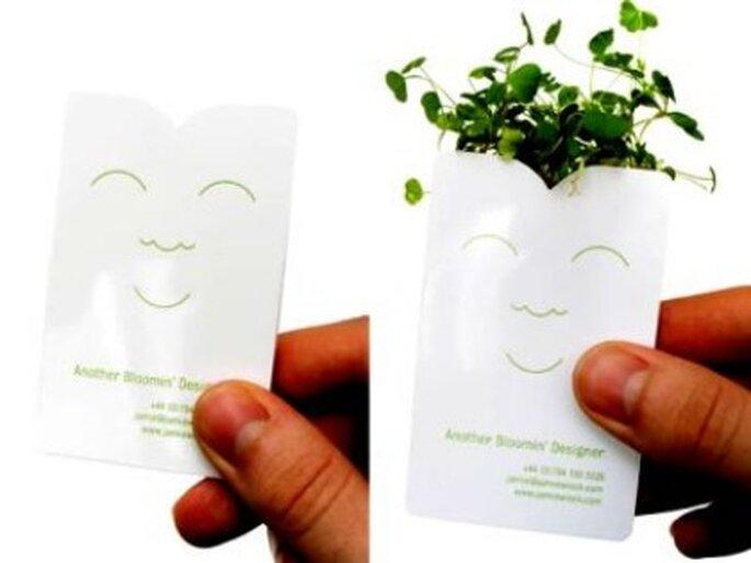 Detalles de boda: paquetes con semillas de flores