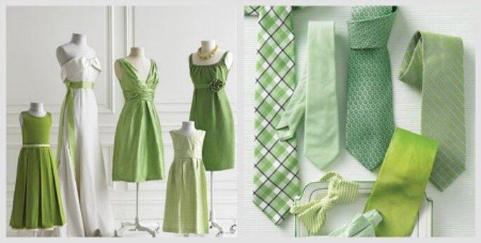 Equipos para bodas en verde y blanco