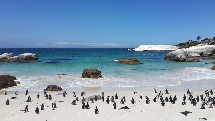 Cape Town. Foto: Pixabay