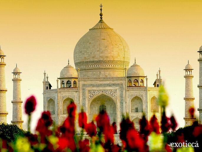 Exoticca - India