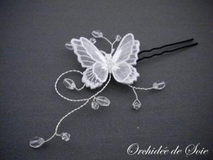 Pic papillon - Orchidée de soie