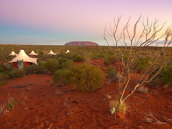 Photo : australie_ayers_rock_longitude_131_dune_top