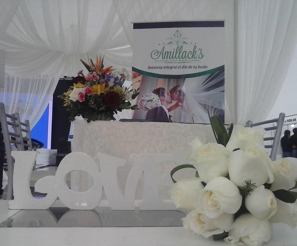 Amillacks Giovanna Alonso WP